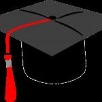 Lynn Vardy Grad 2020 contest hat icon