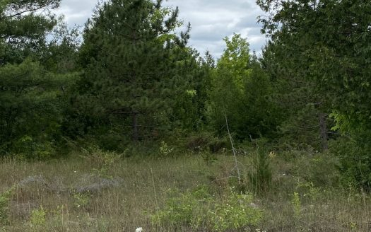 Nolans Road Land for sale