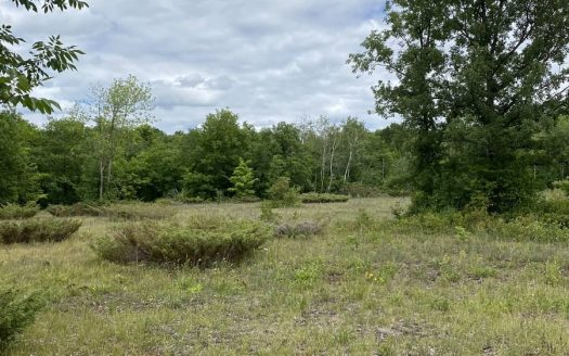 266 HOLBROOK ROAD land for sale