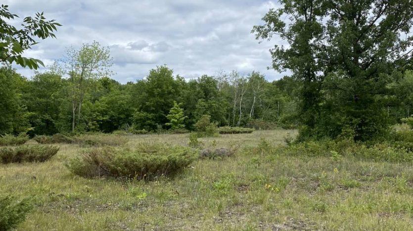 266 HOLBROOK ROAD land for sale